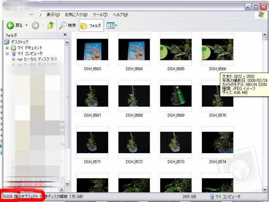exp now.jpg